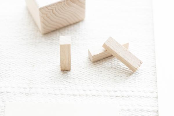 Just Blocks Bauklötze aus Holz