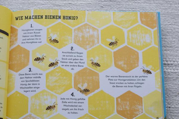 das buch der bienen - charlott Milnder