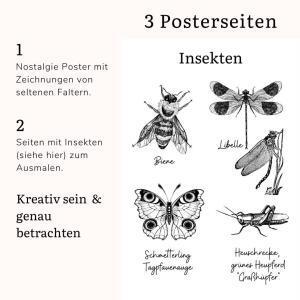 Materialpaket Schmetterlinge und Insekten