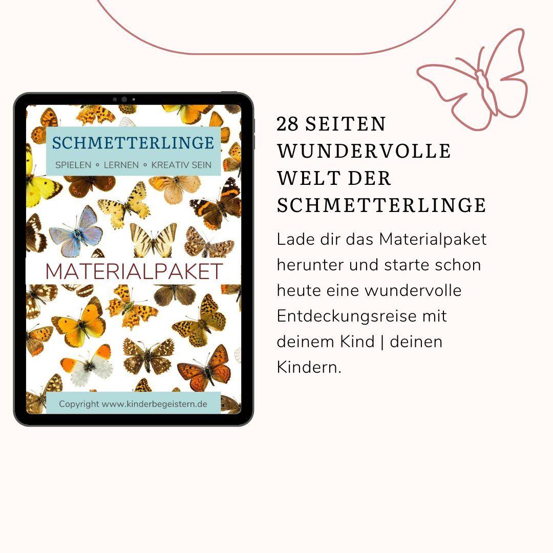 Cover Bild Materialpaket Schmetterlinge und Insekten