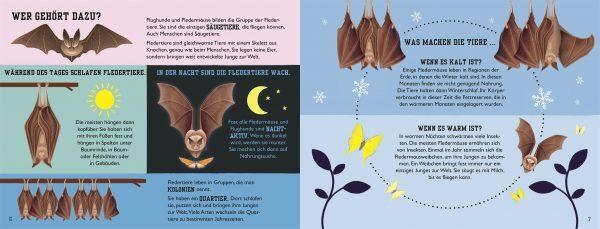 7001002 DK Fledermaus - Sachbuch Tiere für Kinder - ab 5 Jahren - 9783831040605 - 2