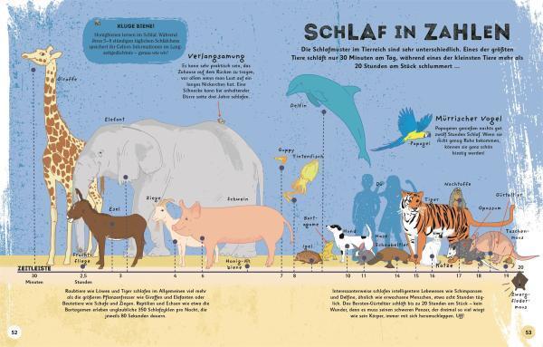 7001004 DK Alles übers Schlafen - Sachbuch für Kinder - COVER